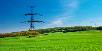 Sapere Electricity Report 2014